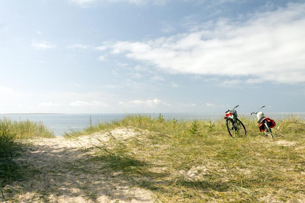 Cyklar vid strand